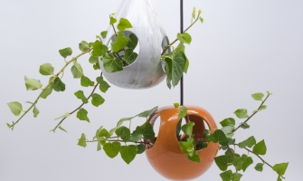 SUSPENDED POT FOR PENDANT PLANTS